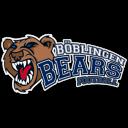 Logo Böblingen Bears